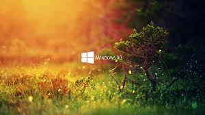 windows nature wallpapers top free
