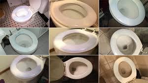 turning their toilet seats blue