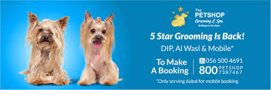 Mobile Pet Grooming for Dogs & Cats | Dubai Pet Food