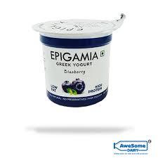 epigamia greek yogurt 90g blueberry