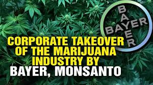 SHARE! Monsanto And Bayer Are... - Meigs fertilizer company | Facebook