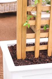 diy trellis planter love grows wild