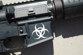 Custom Gun Decals Mutiny Shop