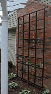 4 X 8 Wall Trellis Outdoor Trellis Diy Garden Trellis Wall Trellis