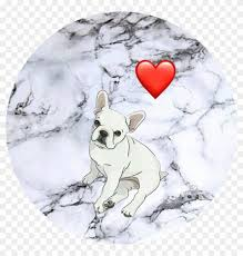 french bulldog cute wallpapers