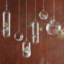 shane powers hanging glass bubble