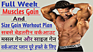 muscles gain and size gain workout plan