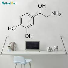 Creative Adrenaline Molecule Chemical Formula Sticker Decal Science Study Room Home Window Removable Vinyl Wall Stickers B545 Wall Stickers Aliexpress