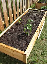 raised garden beds that you can build