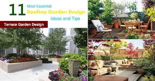 rooftop garden design ideas and tips