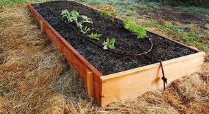 drip irrigation supplies for home