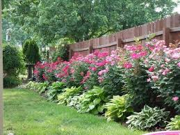 59 diy landscaping ideas and tips to