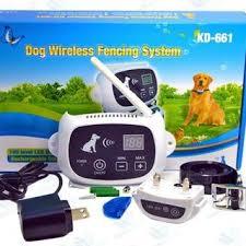 Electronic Dog Fence