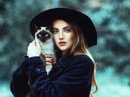 wallpaper cat cat hat