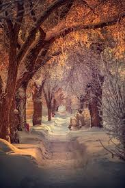 Pin by Myrna Jackson on winter and snow | Winter landscape, Winter ...