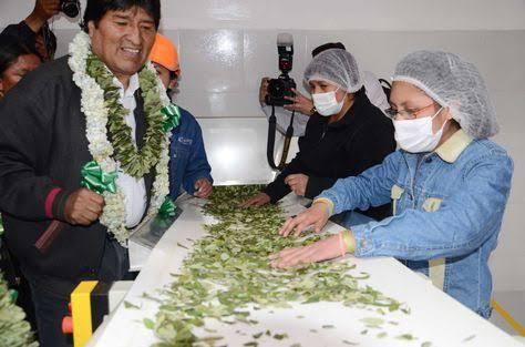 """Resultado de imagen para cocaina de bolivia"""""""