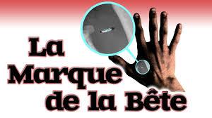 La Marque de la Bête – Comment Survivre Sans l'Implant à Puce | L ...