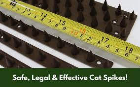 Are Cat Spikes Legal Safe Or Effective Neighbours Fences Walls
