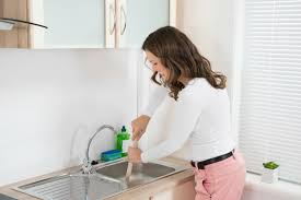 sink with a garbage disposal
