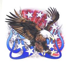 American Flag Stars Stripes And Flames Angry Eagle Full Color Graphic Window Decal Stick