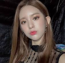 daisy s picture removed from momoland s