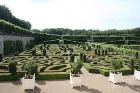 boxwood garden design cau