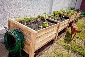 raised garden beds from 2 pallets