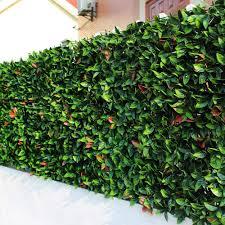 Sunwing 6 Piece Artificial European Laurel Hedge Fence Greenery Panels 20 L X 20 W Piece Walmart Com Walmart Com