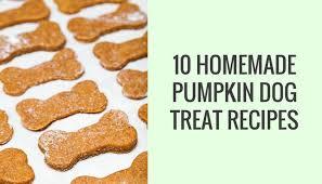 10 homemade dog treat recipes made with