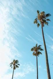 aesthetic summer sky wallpaper