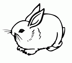 free rabbits coloring pages