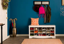 Shoe Storage Ideas For An Active Lifestyle Wayfair