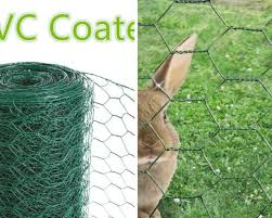Garden Border Fence Wire Mesh Green Pvc Coated Lawn Edging Outdoor 2 Sizes 25cm X 10m For Sale Online Ebay