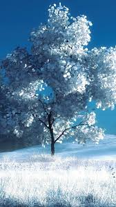 29930 free full screen winter wallpaper