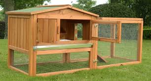 guinea pig houses 30 best indoor and