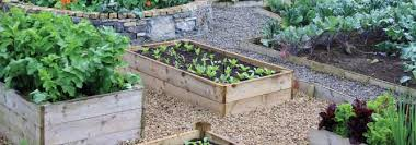 raised beds for vegetable gardening