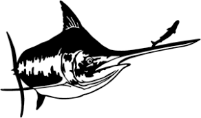Marlin Decal St 19 Vinyl Boat Window Decals 6 Wildlife Decal