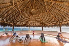 yoga wellness retreat mexico renew