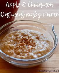 apple cinnamon oatmeal baby puree