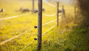 Electric Fence Repair For The New Farmer Qc Supply