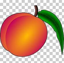 Georgia Peach PNG Images, Georgia Peach Clipart Free Download