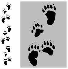 Set Of 12 Bear Track Paw Print Vinyl Decal Sticker Wall Design 2 Diff Size Bear Paw Print Bear Paw Tattoos Paw Print Decal