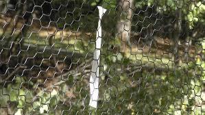Deerfence Com Fence For Deer Management Deerfence