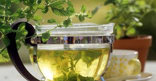Lemon Balm Tea recipe | Eat Smarter USA