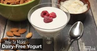 how to make dairy free yogurt