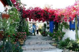 patios in córdoba young adventuress