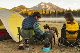 Dog Camping Gear Best Sellers Must Have Items For Your Next Trip Ruffwear Uk