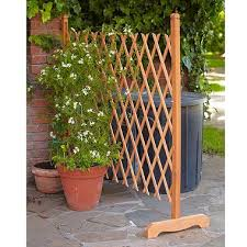 Pin By Kim Cole On Container Gardening Diy Garden Trellis Garden Trellis Diy Trellis