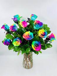 rainbow roses in elk grove ca na