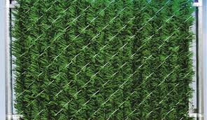 Chain Link Hedge Slats Forevergreen Privacy Hedge